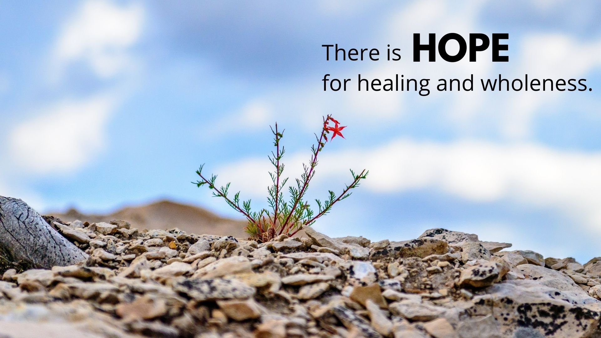 THERE IS HOPE for healing and wholeness