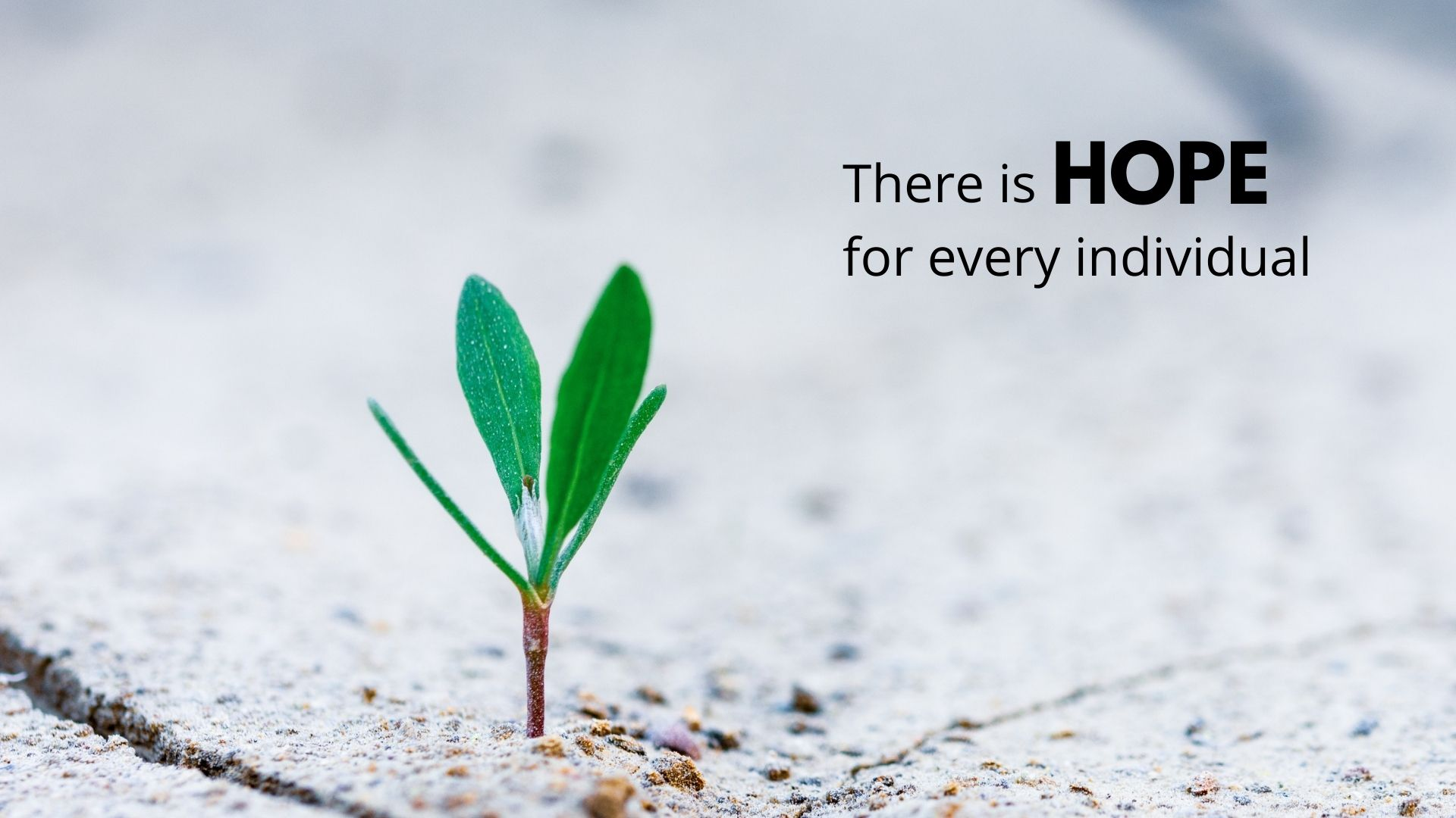 THERE IS HOPE website front page